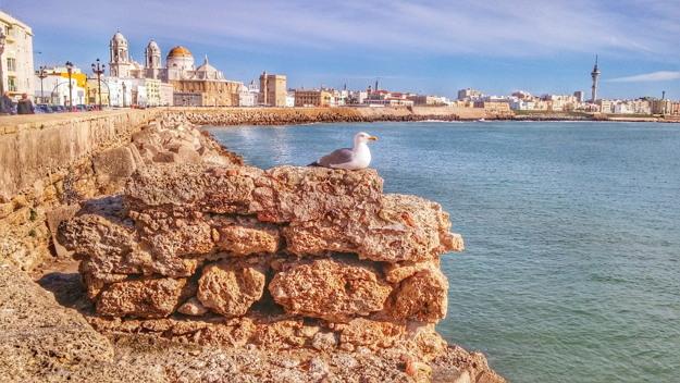 Vivir todo tipo de experiencias en Cádiz