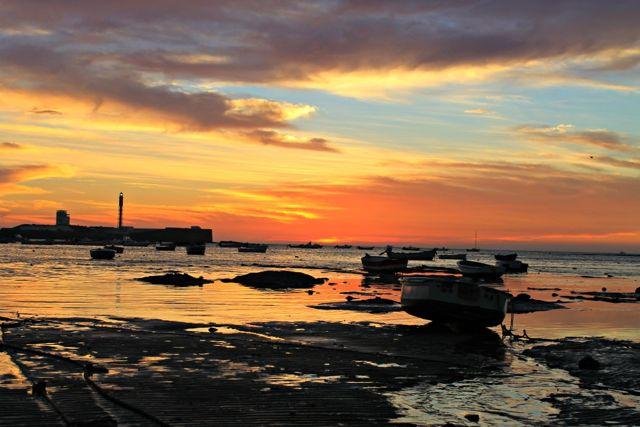 Disfruta de Cádiz en primavera, la mejor estación para visitar la ciudad