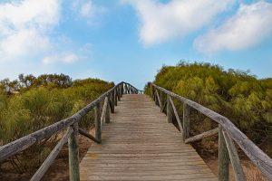 Disfruta del senderismo de la provincia de Cádiz en otoño